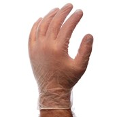 Large Clear Powder Free Disposable Gloves - Pack of 100