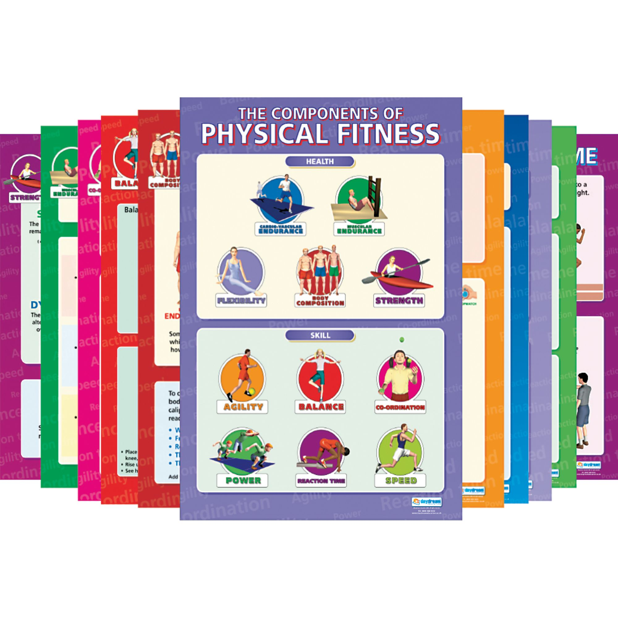 Components Of Physical Fitness Posters Pack Of 12