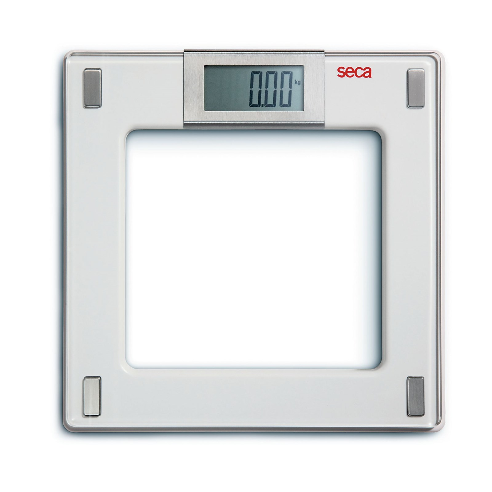 Electronic Flat Scales
