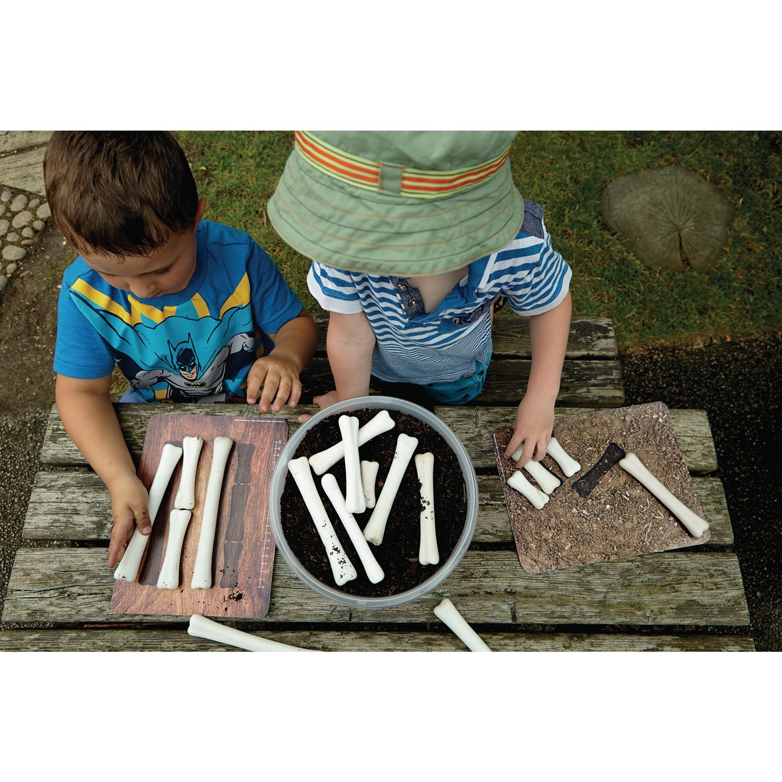 Dino Bones Match and Measure - Pack 16