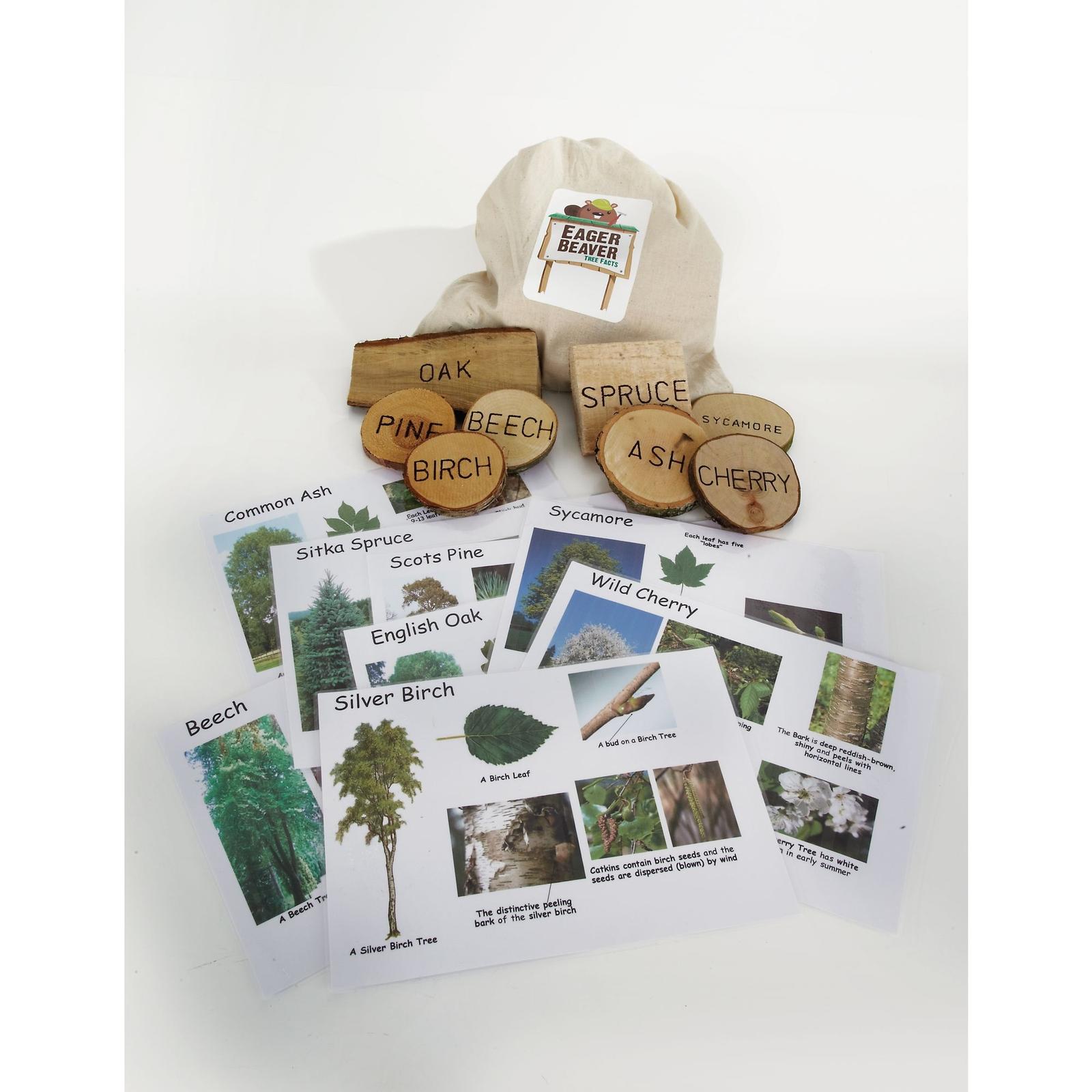 Eager Beaver - Tree Investigation Kit