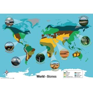 World Biomes Map Findel International