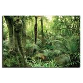 The Rainforest Vinyl Backdrop
