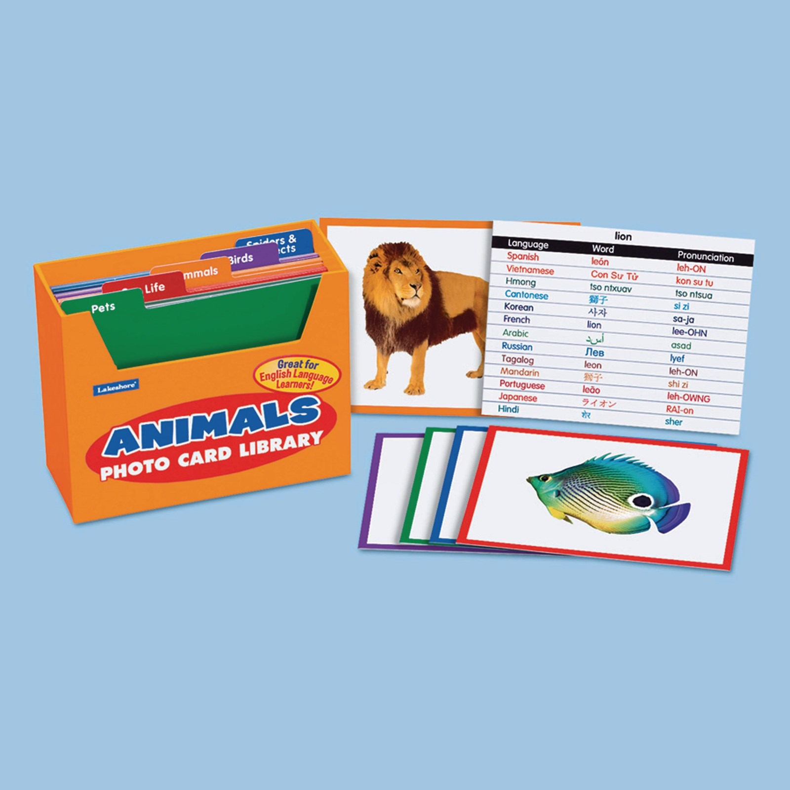 EAL Photocards - Animals Pack of 50