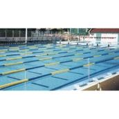 Swimming | Hope Education