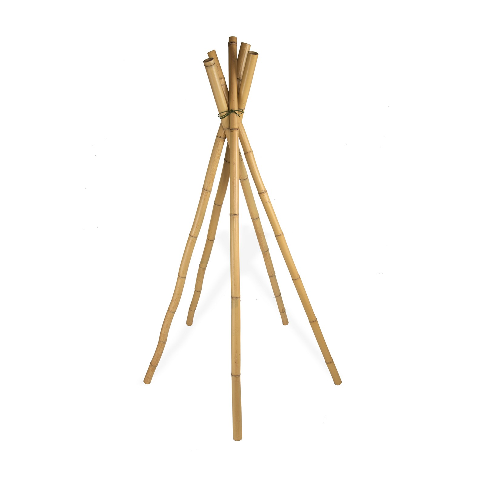 Large Bamboo Sticks - Pack of 5