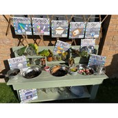 Outdoor Mud Kitchen Action Signs from Hope Education