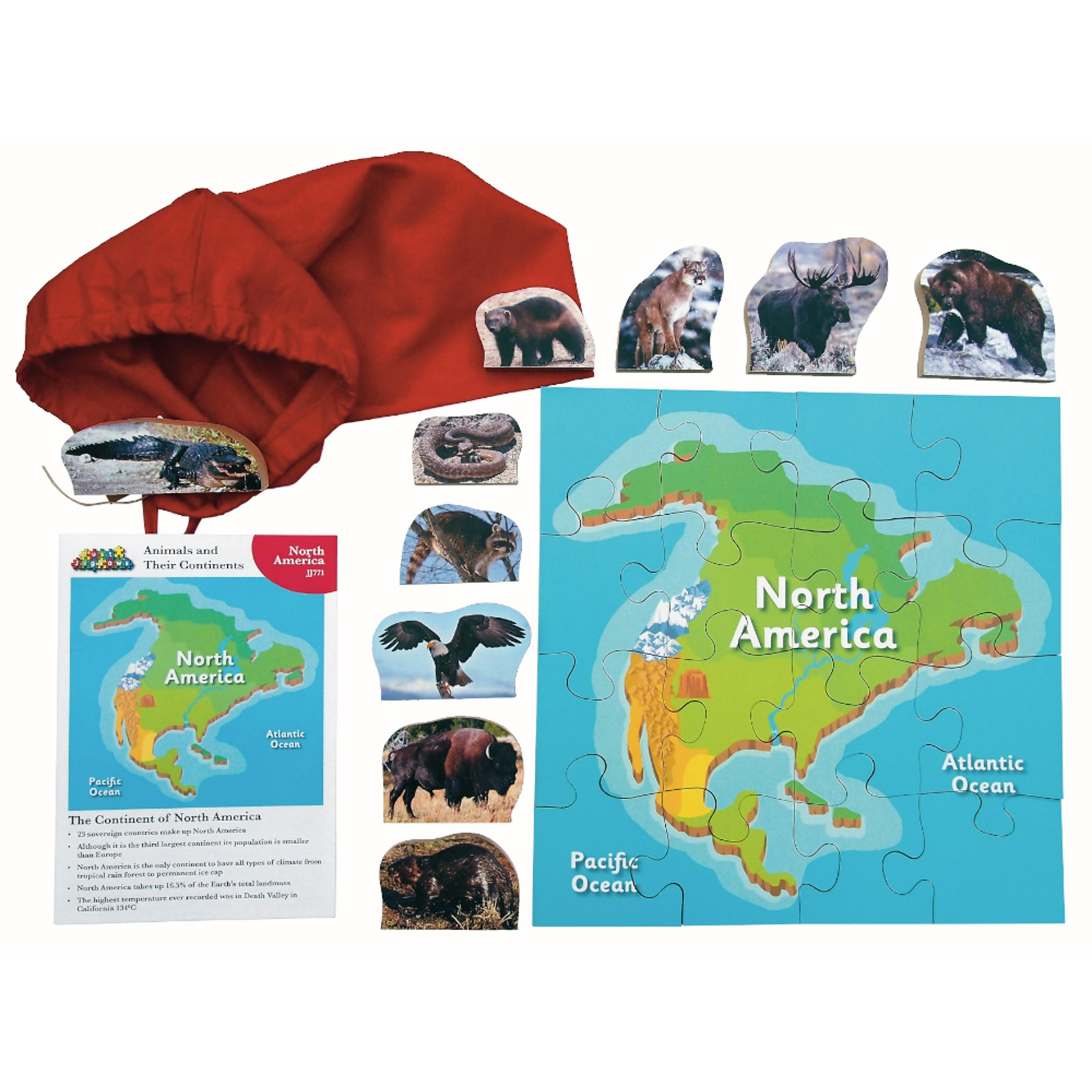 North American Animals and Their Continents