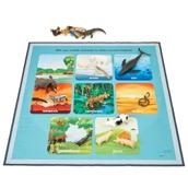 Animal Characteristics Classification Mat