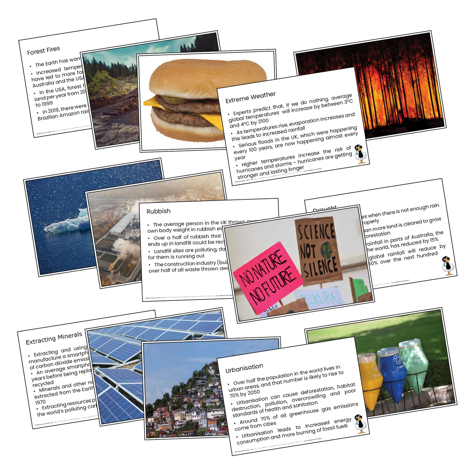 Climate Emergency Fact Cards
