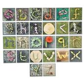 Nature Lowercase Alphabet Floor Tiles - Pack of 26