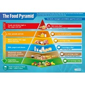 The Food Pyramid Poster