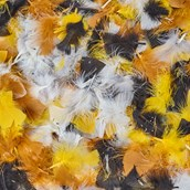 Natural Feathers 50g