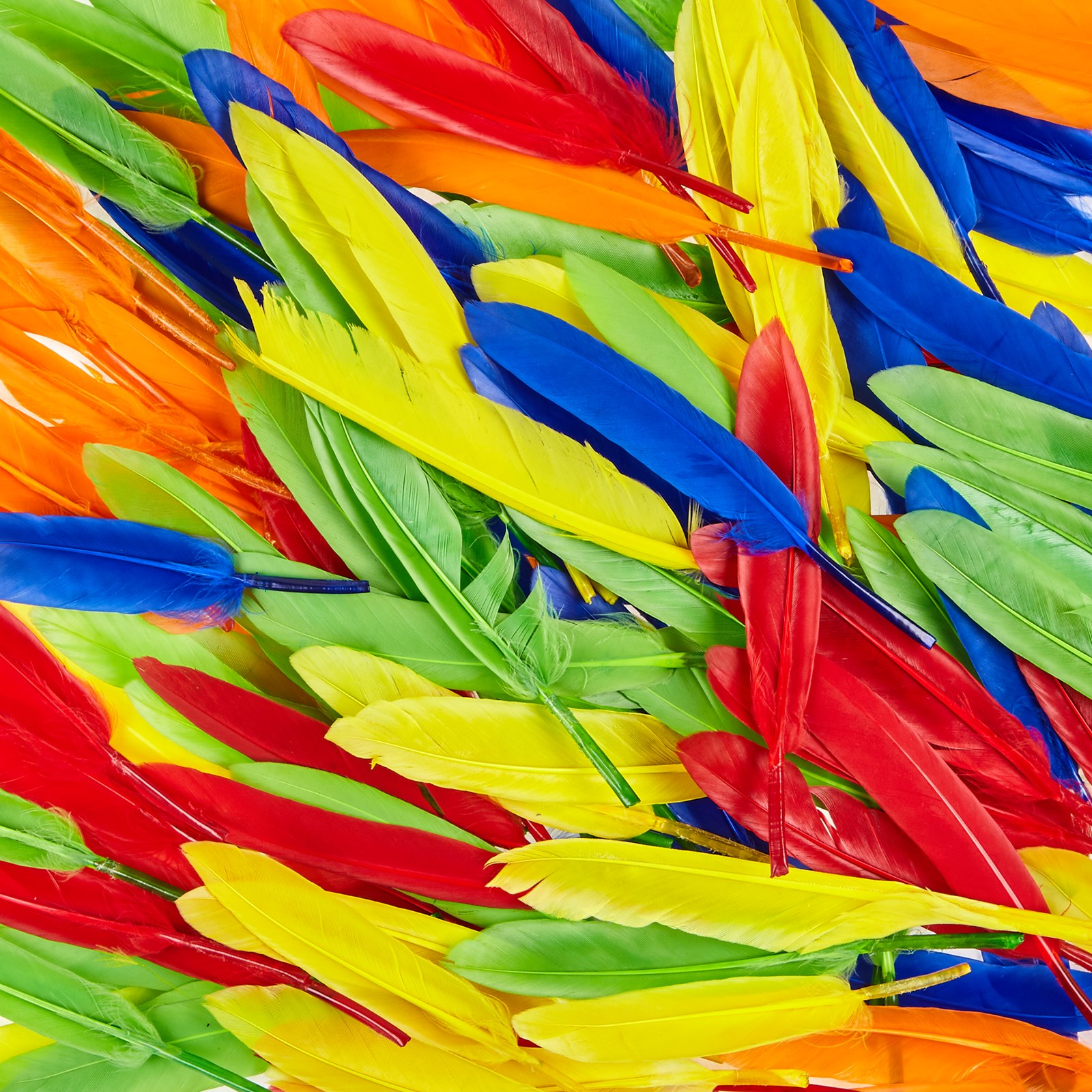 Rainbow Duck Quill Feathers 28g