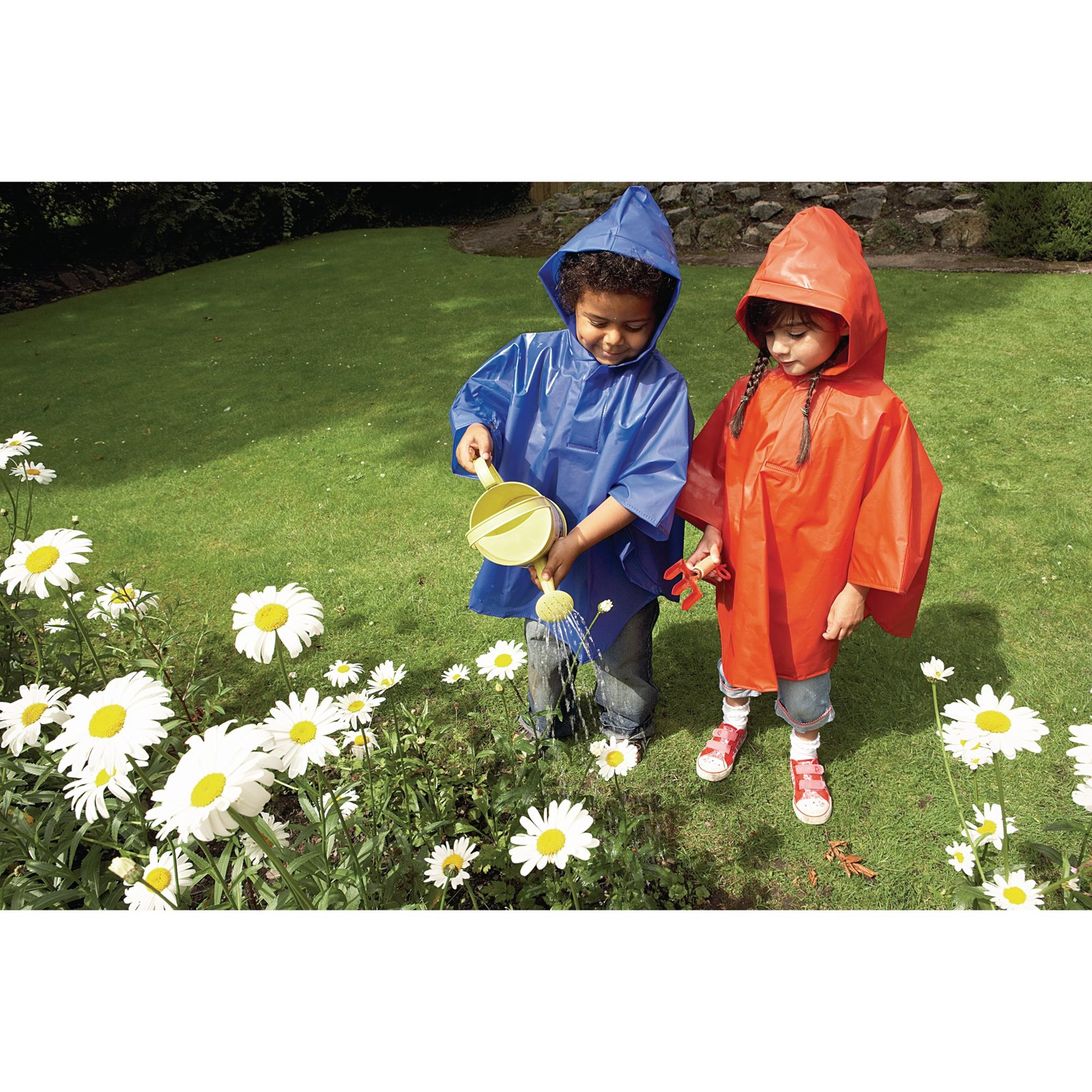 Poncho Class Pack of 25