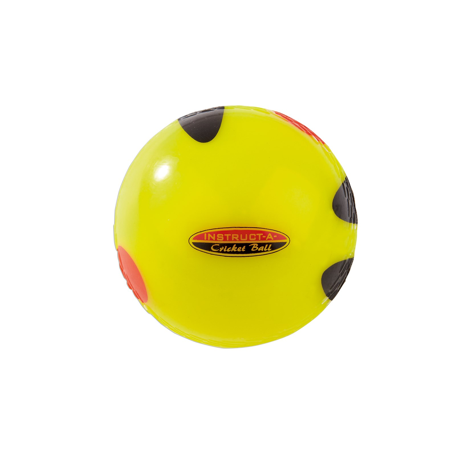 Instruct-a-Cricket Ball
