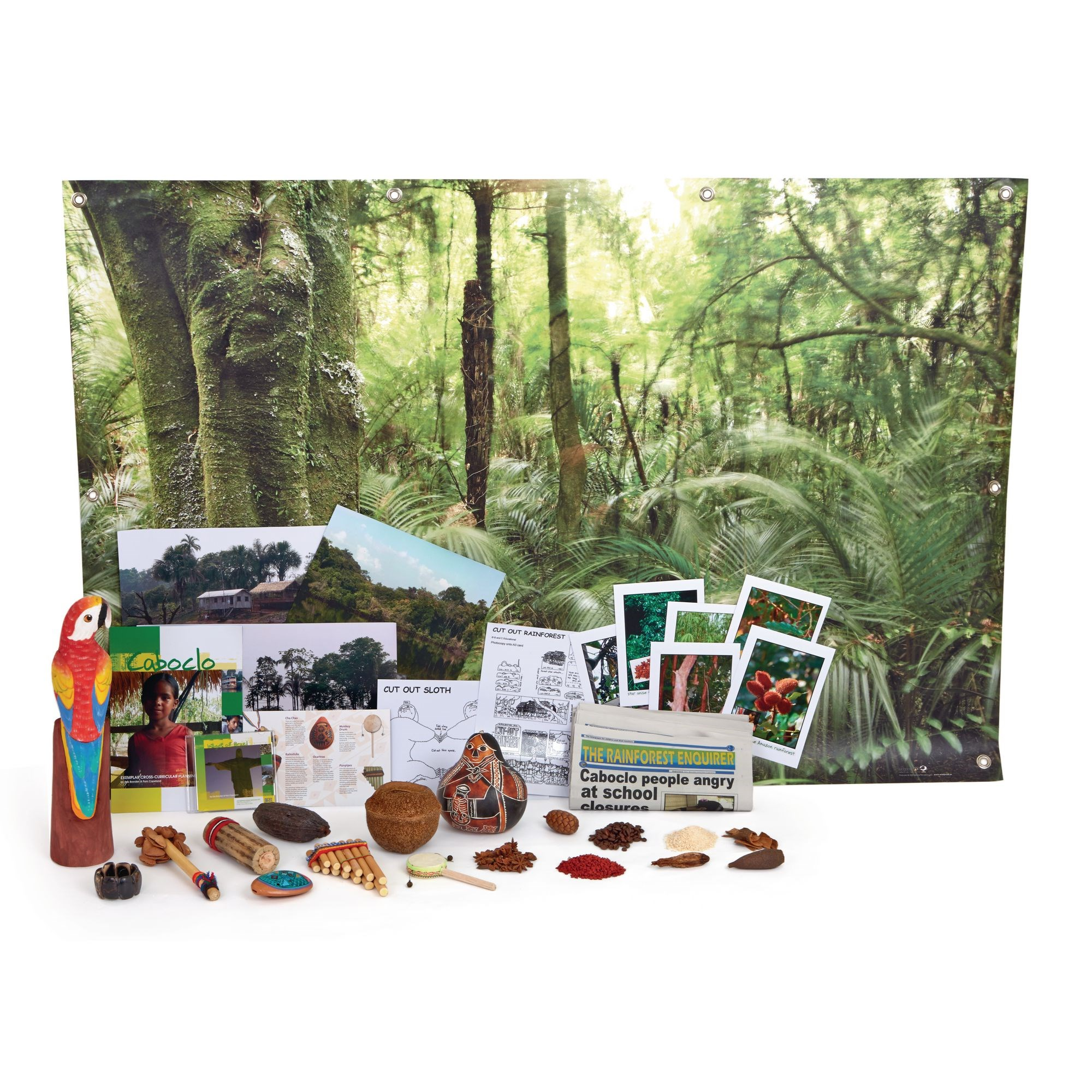 Amazonian Rainforest Box
